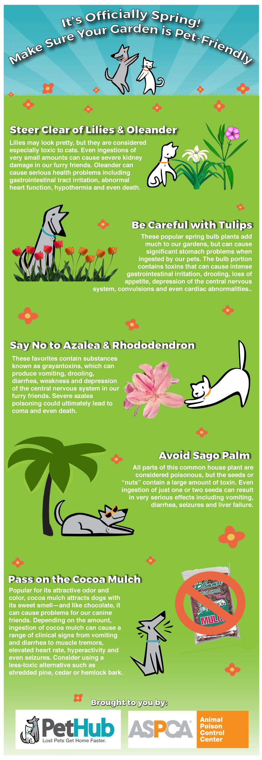 Make Sure Your Garden Is Pet-Friendly #infographic