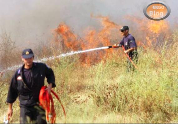 Φωτιά σε ξερά χόρτα στη Μουδανιών