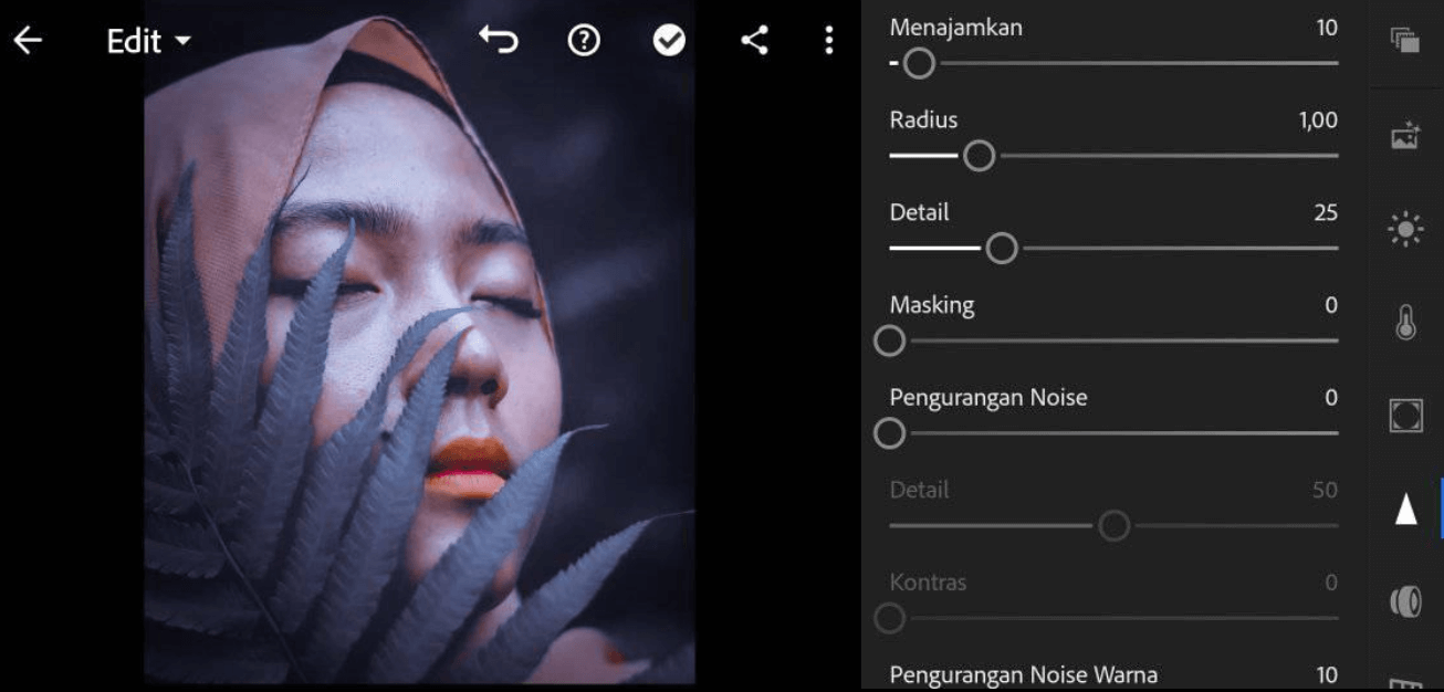 Rumus Lightroom Dark Moody Bahasa Indonesia