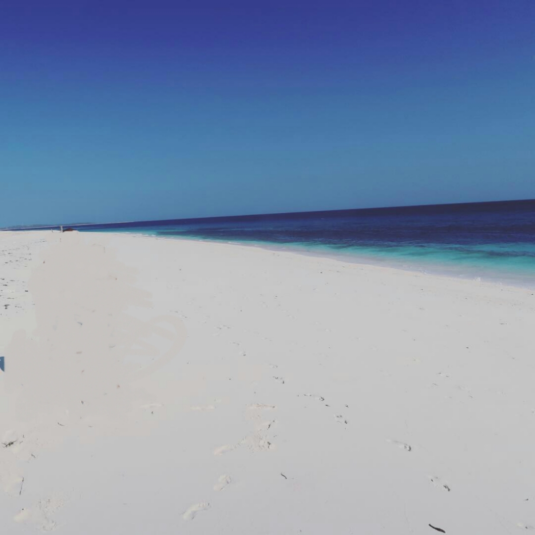 doo beach