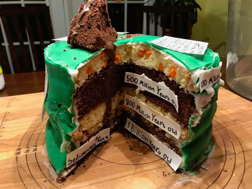 Caroline Arnold Art And Books Science Project Layer Cake History