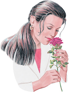 Clipart image of a woman smelling a rose