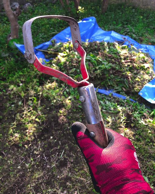 雑草を削り取る道具は赤い