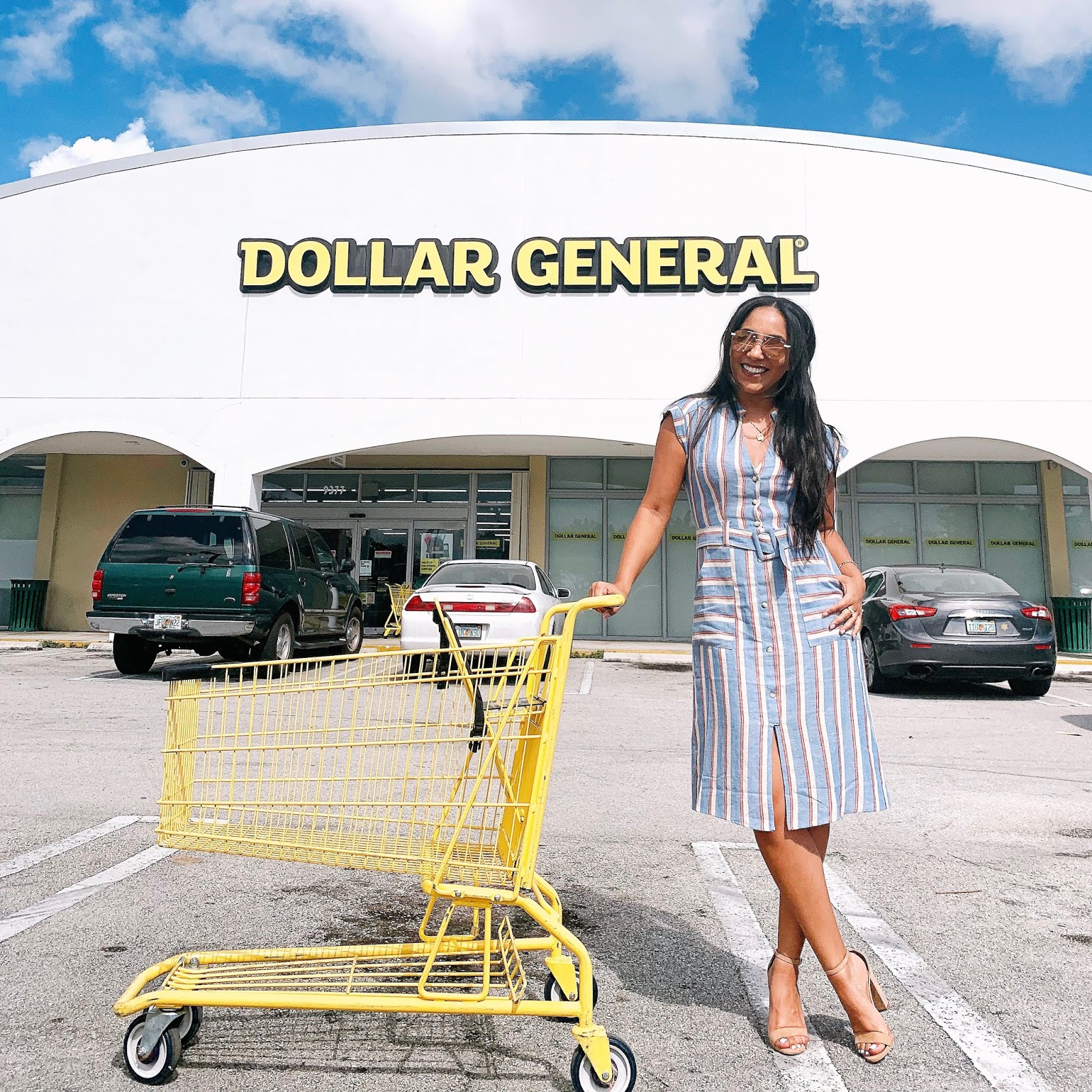 shopping-cart-photoshoot-ideas-dollar-general