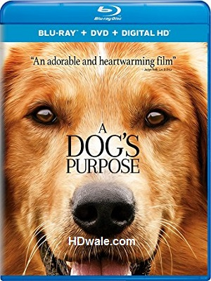 A Dog's Purpose Full Movie (2017) 1080p & 720p BluRay