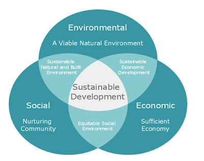 Sustainability consultancy Dubai Abu dhabi