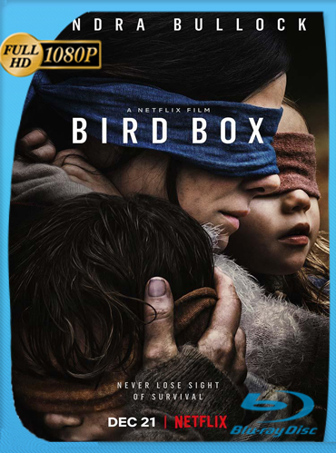 Bird Box A Ciegas (2018) HD [1080p] Latino Dual [GoogleDrive] TeslavoHD