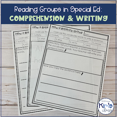 Reading Groups in Special Education: Writing and Comprehension
