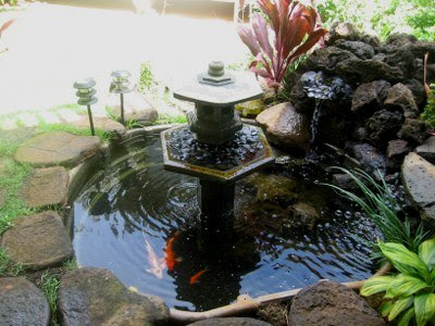 desain kolam ikan di lingkungan rumah - mancing info
