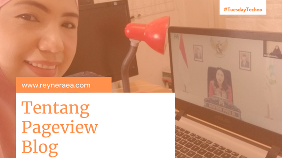 Tentang Pageview Blog