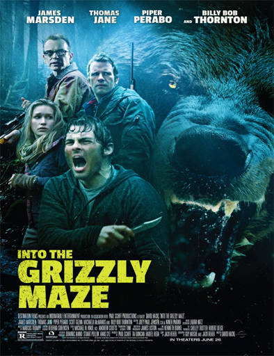 Ver Territorio grizzly (Into the Grizzly Maze) (2015) Online