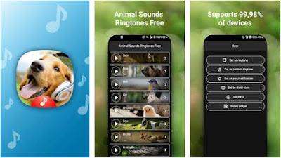 aplikasi suara hewan - 6