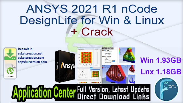 ANSYS 2021 R1 nCode DesignLife for Win & Linux + Crack