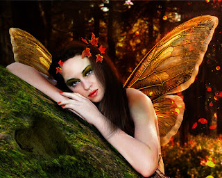 photo manipulation, fairy wings, autumn, heart symbol on boulder