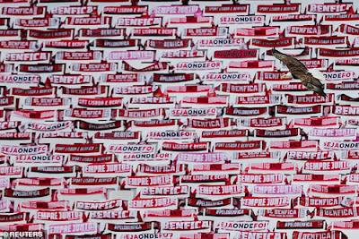 Trở lại thất vọng, xe bus của Benfica bị ném đá xối xả 2