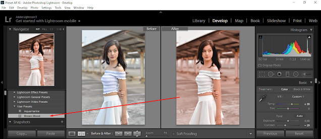preset lightroom chocholate