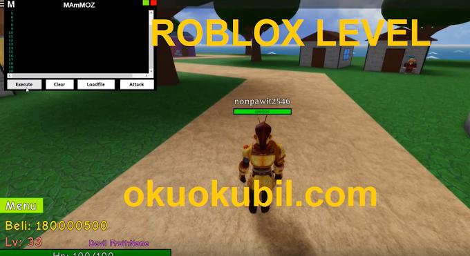 Roblox One Piece Dark King Level Atlama Oyunu Para ve Script Hilesi 07 Aralık