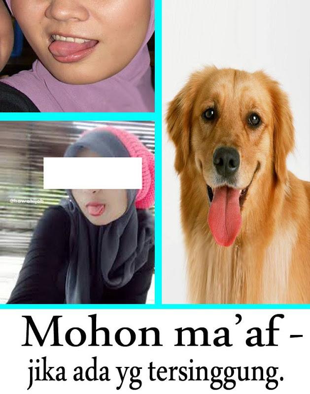 Anjing Menjulurkan Lidah : anjing, menjulurkan, lidah, Janganlah, Menjulurkan, Lidah, Ketika, Berfoto, Selfie!