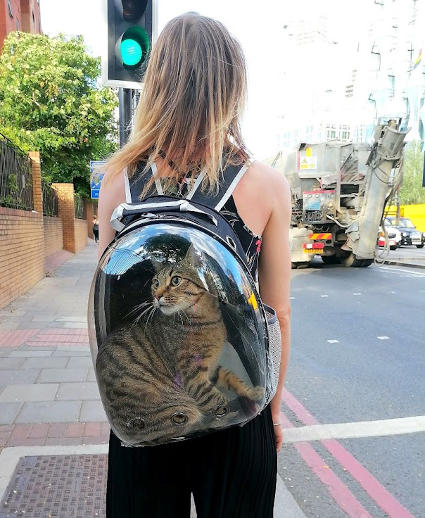 Backpack-style transparent cat carrier with airholes