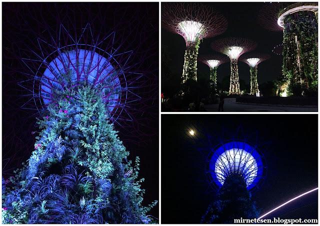 Сингапур, сверхдеревья