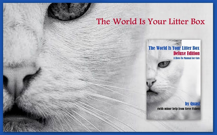 The World Is Your Litter Box