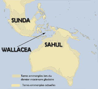 penyebaran harimau indonesia 2,6 juta tahun yang lalu