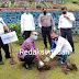 Jaga Debit Air, PDAM Tirtanadi Sumut Tanam Pohon di Daerah Resapan Air