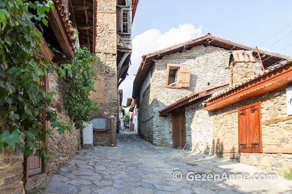 Tarihi konaklar ve evler, dar sokaklar, Birgi köyü