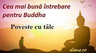 Cea mai bună întrebare pentru Buddha: Poveste cu tâlc