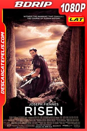 La resurrección de Cristo (2016) 1080p BDrip Latino – Ingles