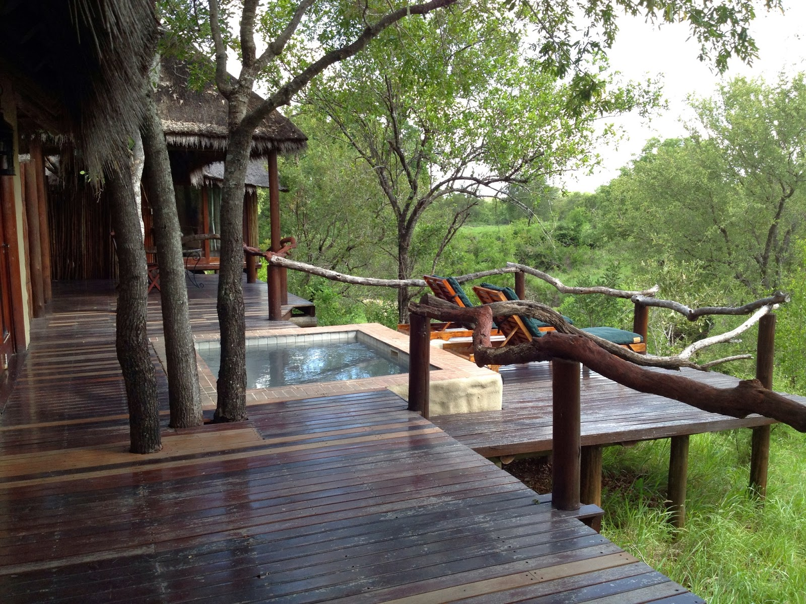 Sabi Sands - Our deck and plunge pool at Simbambili Game Lodge
