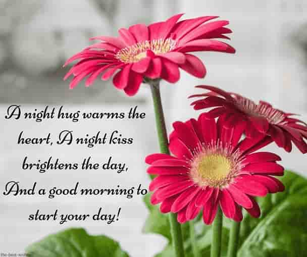a good morning sms to my girlfriend with flowers