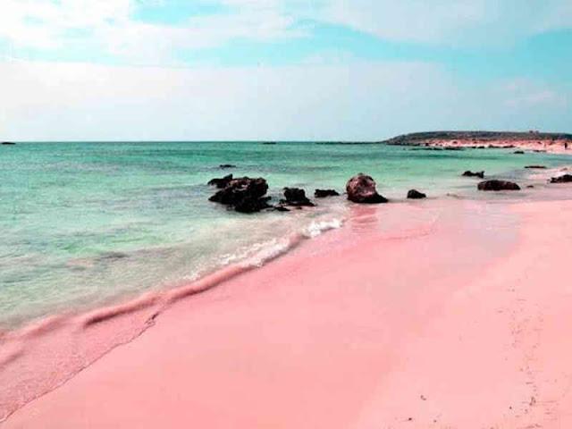 Pantai Pink Jadi Destinasi Wisata Laut di TN Komodo