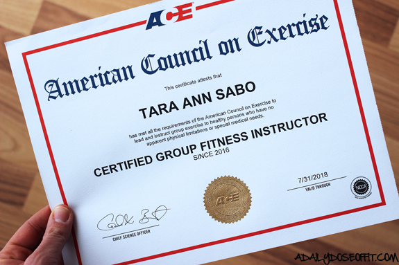 group exercise certification, fitness professional