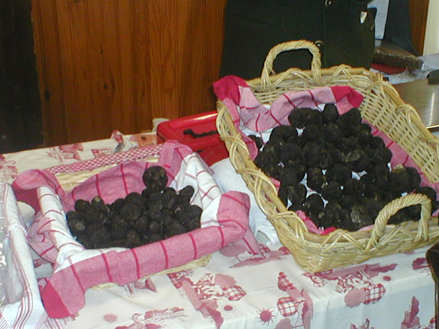 Black truffle Tuber melanosporum at an annual market.  Indre et Loire, France. Photographed by Susan Walter. Tour the Loire Valley with a classic car and a private guide.