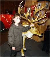 The Boy and a stuffed reindeer