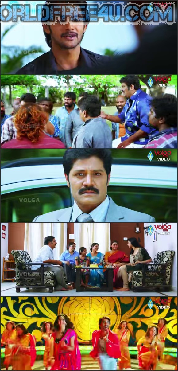 Screen Shot Of Rough 2014 Telugu Movie Hindi Dubbed Free Download 100MB HEVC For Mobiles