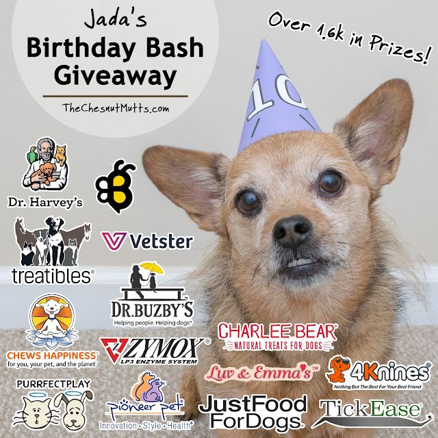 Jada's 10th Birthday Bash - Over $1.6k in Prizes!