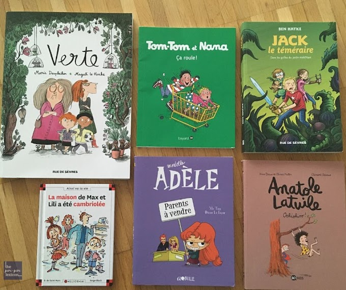 20+ graphic novels in French for young readers