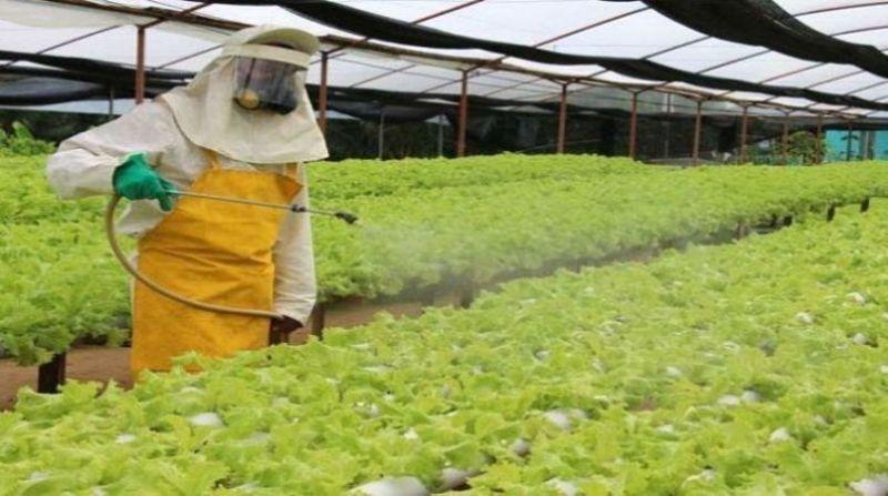 O Glifosato é o principal ingrediente do Roundup, o herbicida Monsanto  mais usado no mundo - causa câncer. Embora estudos tenham sido publicados em periódicos revisados