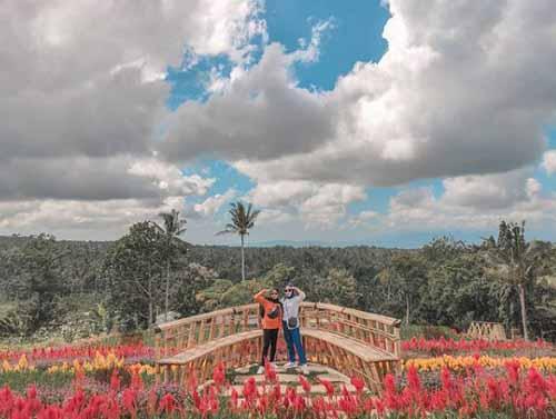 Destinasi Argo Wisata Taman Suruh