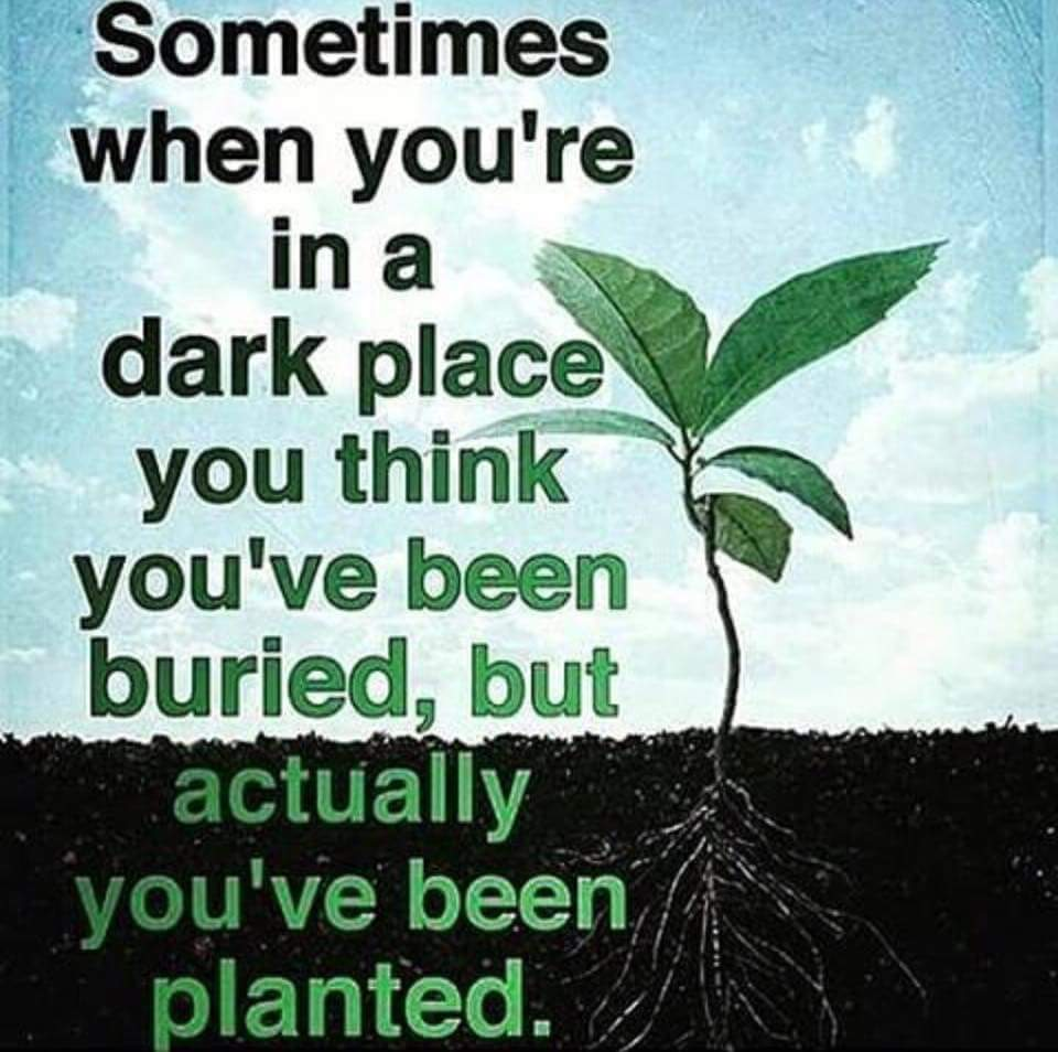 stretch to succeed sometimes when you are in a dark place you think