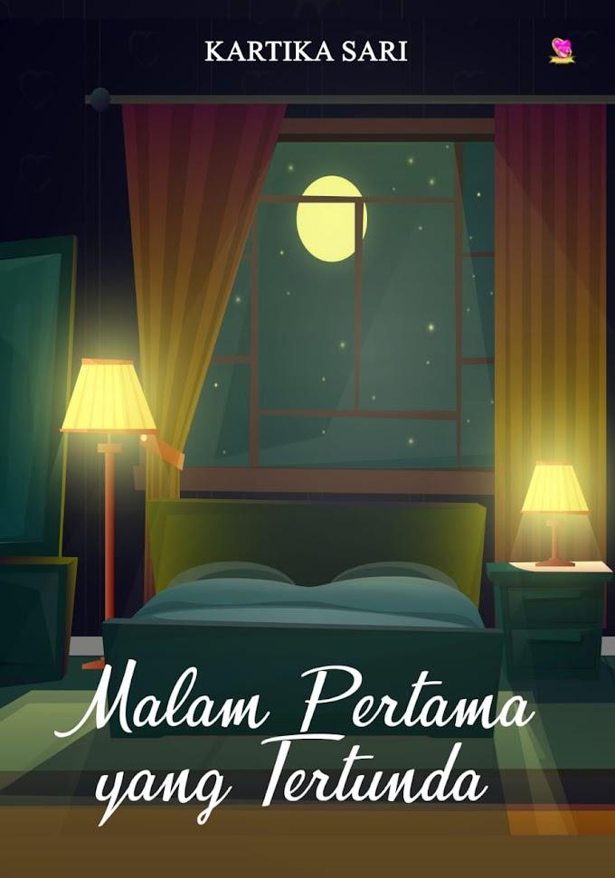 Novel : Malam Pertama yang Tertunda