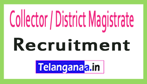 Collector / District Magistrate Adilabad Recruitment