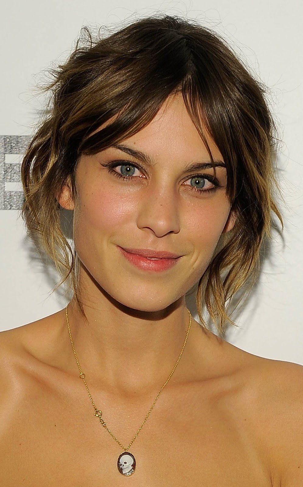 alexa chung biography pictures and biography. Black Bedroom Furniture Sets. Home Design Ideas