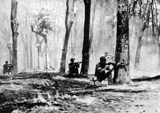 Việt Tân trắng trợn xuyên tạc về chiến dịch Mậu Thân 1968