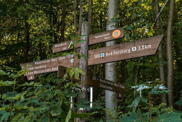Ringwanderweg Bad Harzburg | Ausgedehnte Wanderung um die schöne Stadt im Harz 04
