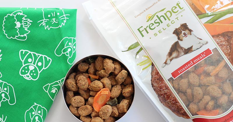 Fresh Dog Food Your Pup Will Love