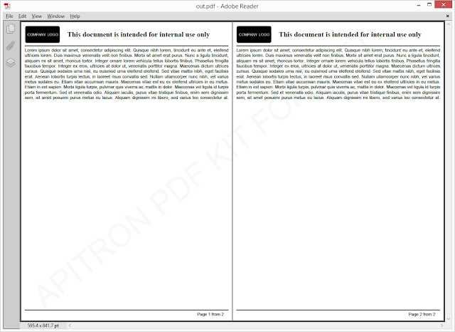 Pic. 1 Resulting PDF document