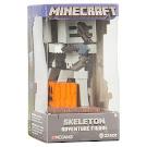 Minecraft Skeleton Adventure Figure Series 1 Figure